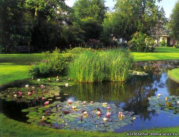 Озеленение, ландшафтный дизайн, услуги садовника,